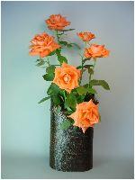 バラを生けた乾漆花器