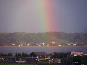涸沼から忽然と現れた虹
