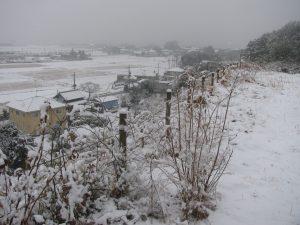 雪化粧したのんびりぼっこ広場